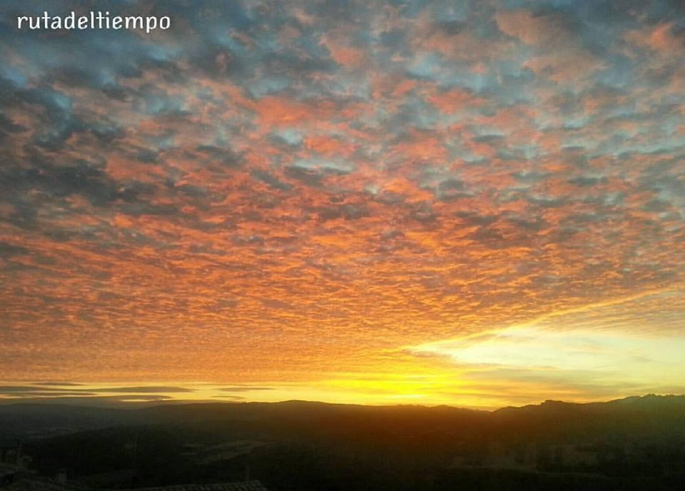 Altocúmulos teñidos por la luz del amanecer